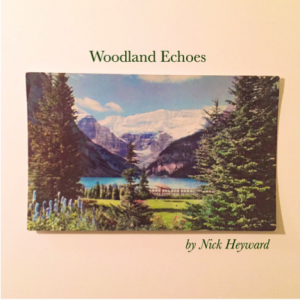 "Album art ""Woodland Echoes"""